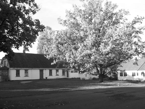 Nordre Taasen gård