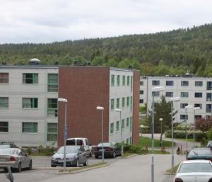 Fjellbirkeland studentby