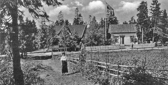 Skogheim og Nordli