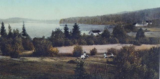 Skjeggerudplassene sett fra Seteren