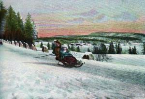 Akemoro på Østre Sogn