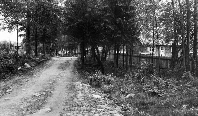 Ved Sognsvann 1946