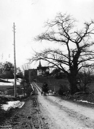 Sognsvannsveien-Wilse